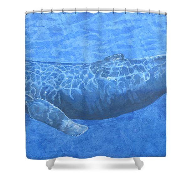 Whale In Surface Light Shower Curtain
