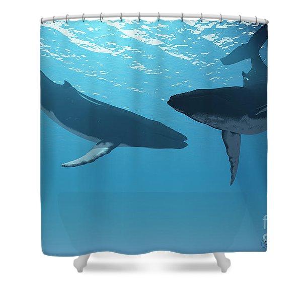 Whale Wonders Shower Curtain