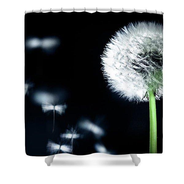 Wish Shower Curtain