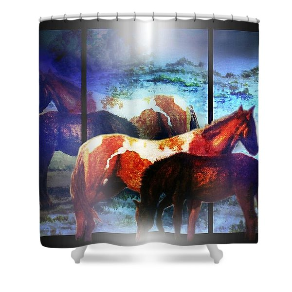 What  Horses Dream Shower Curtain