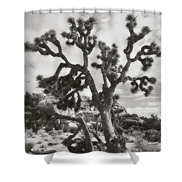 What I Wouldn't Give Bw Shower Curtain