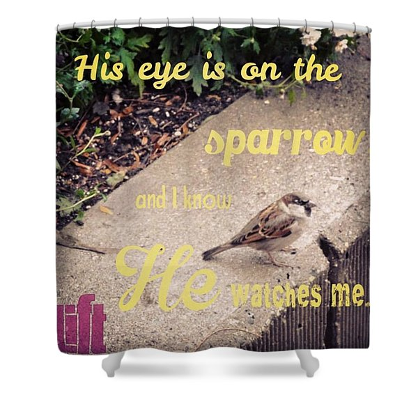 What Is The Price Of Two Sparrows-one Shower Curtain
