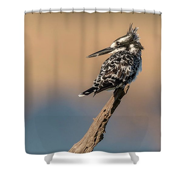 What Was That You Said Shower Curtain