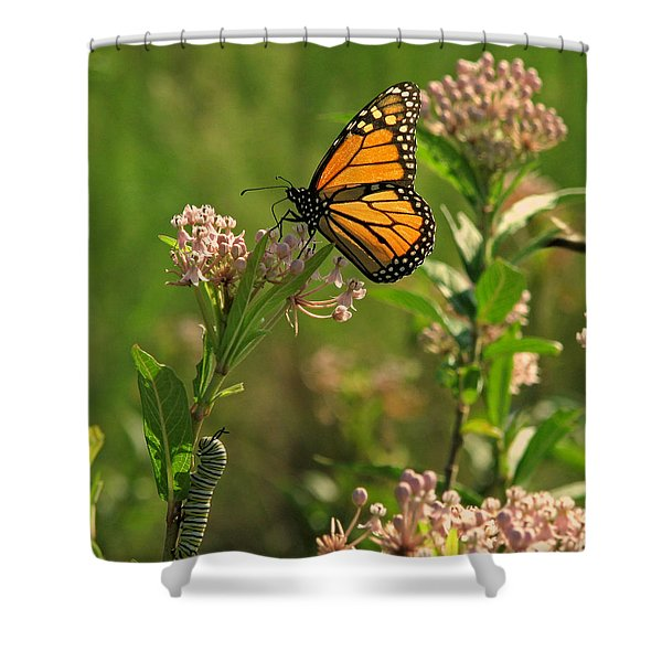 When I Grow Up Shower Curtain