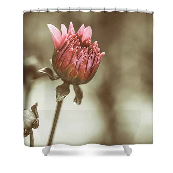When We Were Young Shower Curtain