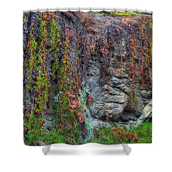 Where Are You Today? What's Up? What Shower Curtain