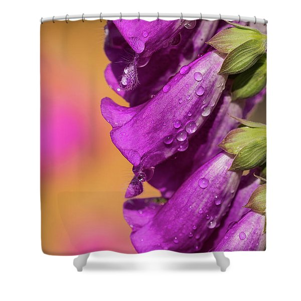 Where Color Grows Shower Curtain