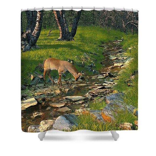 Where The Buck Stops Shower Curtain