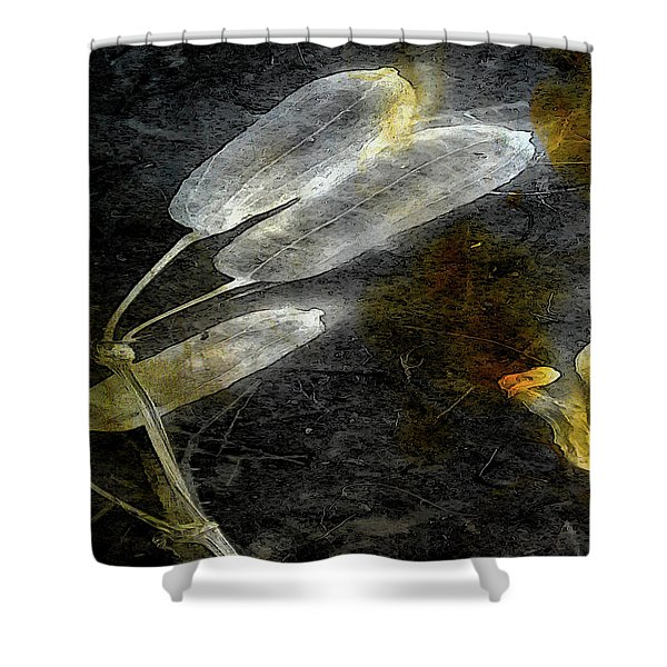 Where There Had Been Light II Shower Curtain