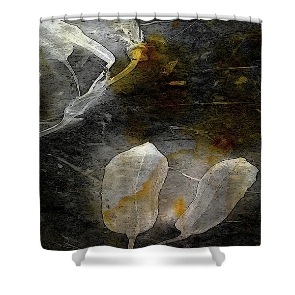 Where There Had Been Light IIi Shower Curtain