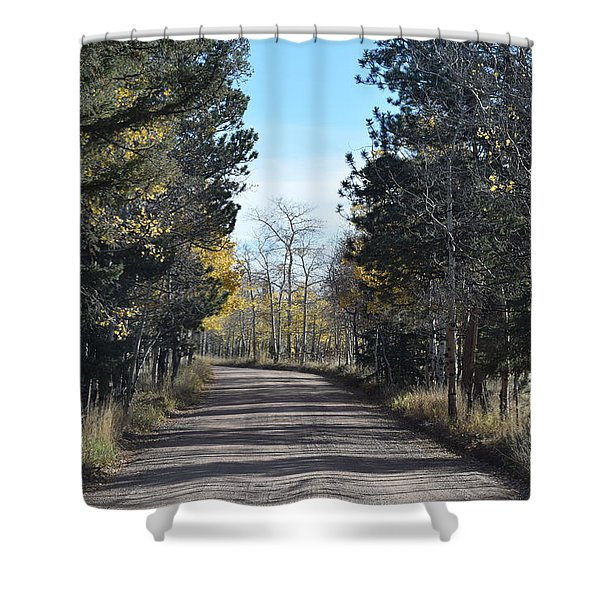 Cr 511 Divide Co Shower Curtain