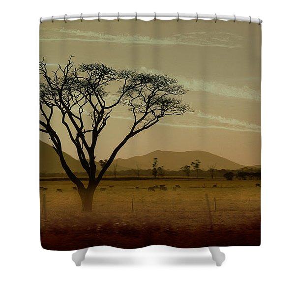 Wherever I May Roam Shower Curtain