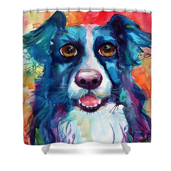 Whimsical Border Collie Dog Portrait Shower Curtain