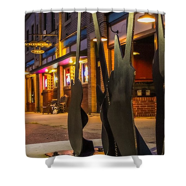 Shower Curtain featuring the photograph Whiskerz And Guitar Icons by Sven Kielhorn