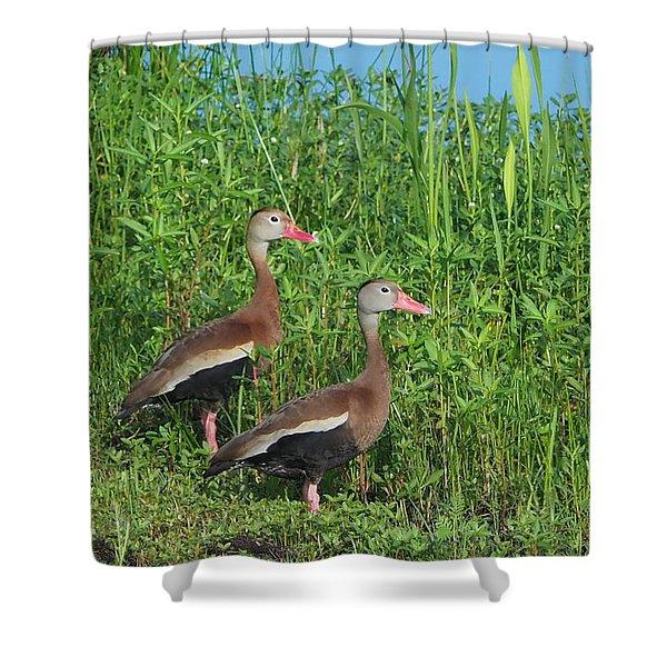 Whistling Ducks Shower Curtain