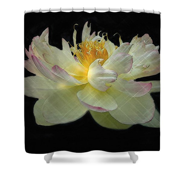 White And Pink Floral Shower Curtain