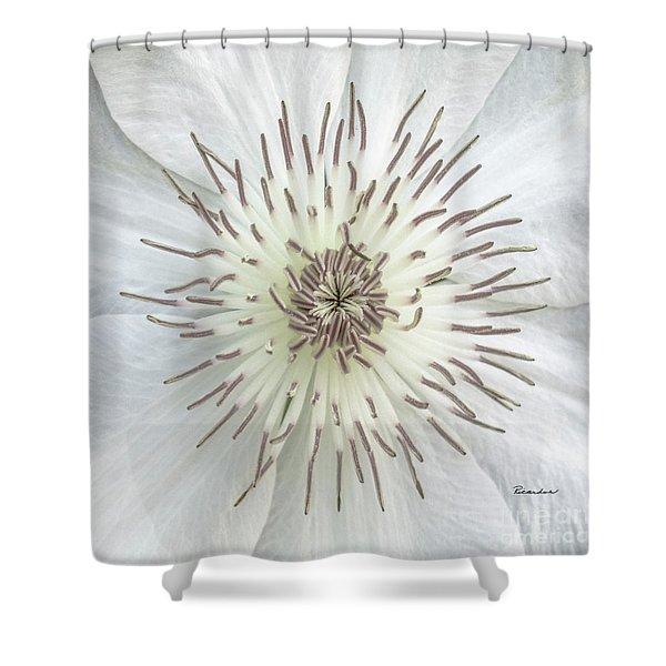 White Clematis Flower Macro 50121c Shower Curtain