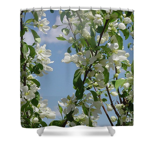 White Crabapple Shower Curtain