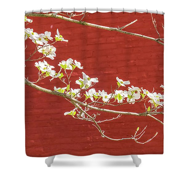 White Dogwood Brick Wall Shower Curtain