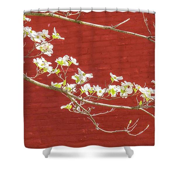 White Dogwood Brick Wall Shower Curtain