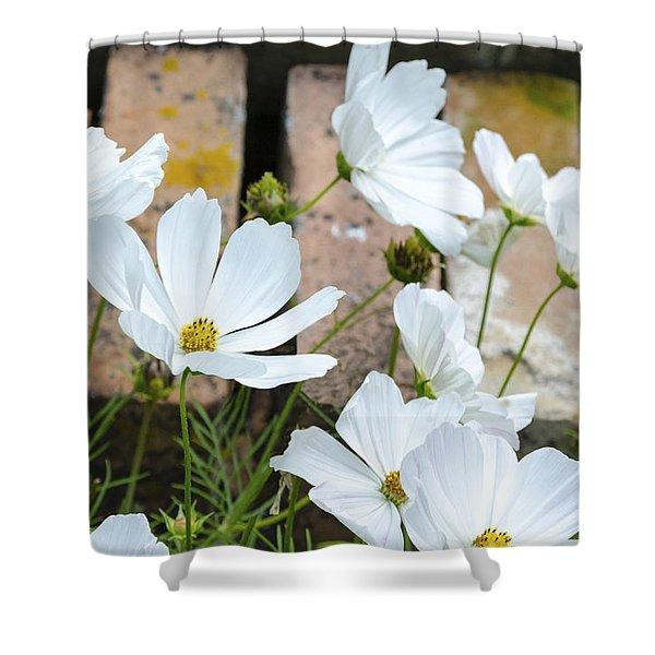 White Flowers Against Bricks Shower Curtain