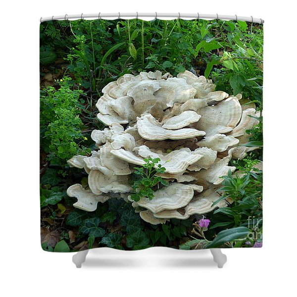 Shower Curtain featuring the photograph White Fungus by Charles Robinson