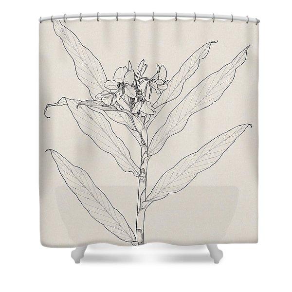 White Ginger Shower Curtain