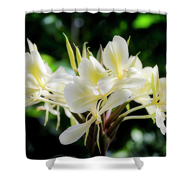 White Hawaiian Flowers Shower Curtain
