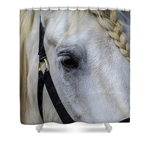 White Work Horse Shower Curtain