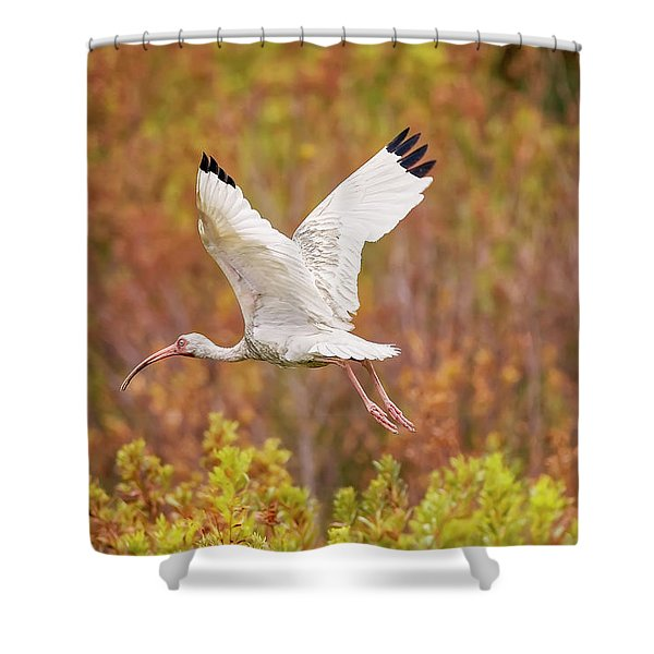 White Ibis In Hilton Head Island Shower Curtain