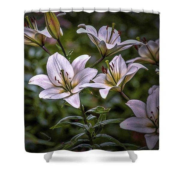 White Lilies #g5 Shower Curtain