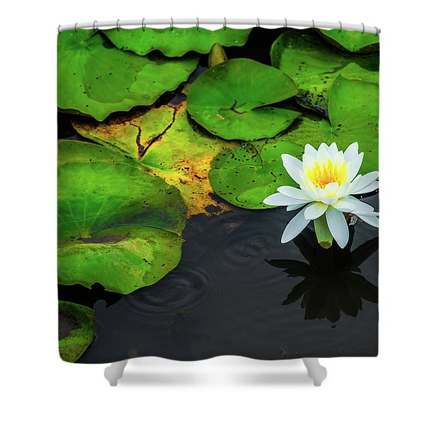 White Lily And Rippled Water Shower Curtain
