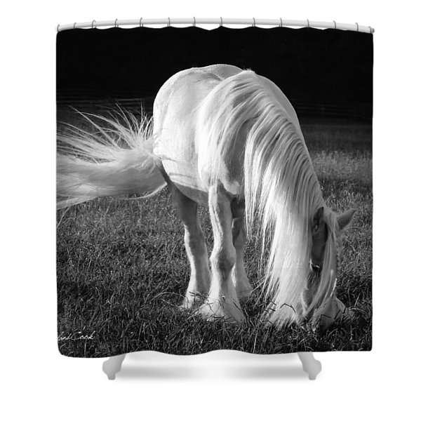 White On Black And White Shower Curtain
