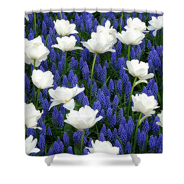 White On Blue Shower Curtain
