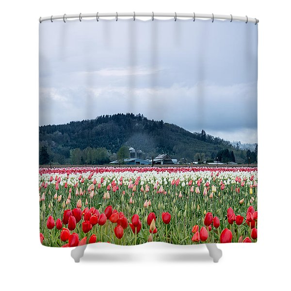 White Pass Highway With Tulips Shower Curtain