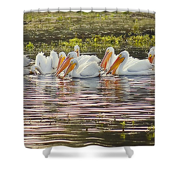 White Pelican Parade Shower Curtain