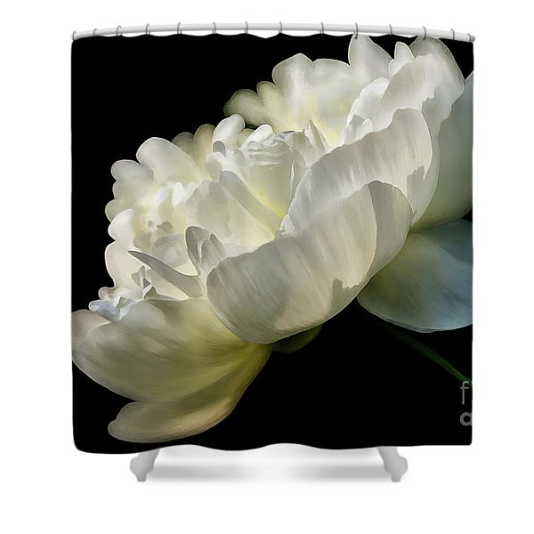 White Peony In The Light Shower Curtain