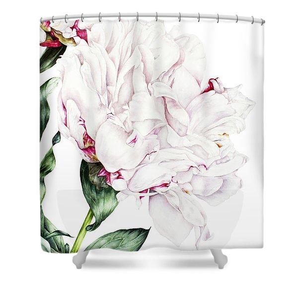 White Peony Shower Curtain