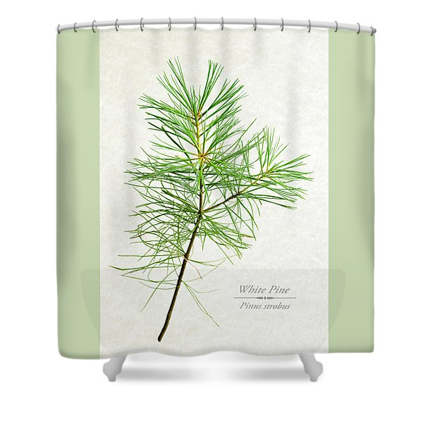 White Pine Shower Curtain
