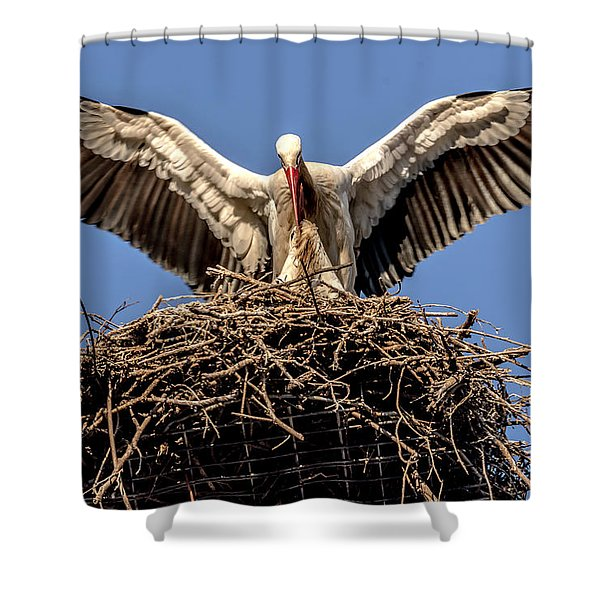 White Storks Of Fagagna 7 Shower Curtain