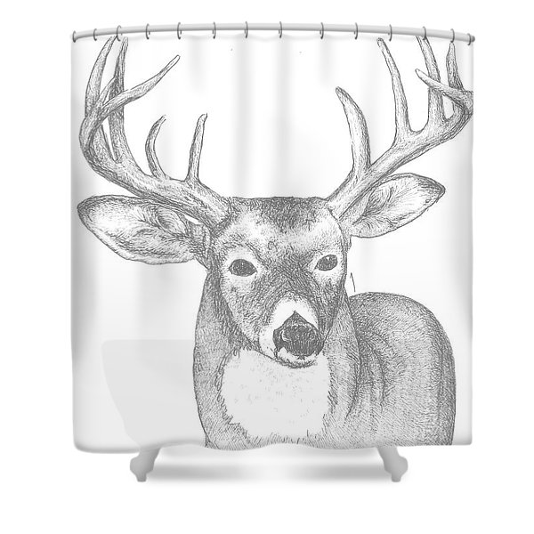 White Tailed Deer I Shower Curtain