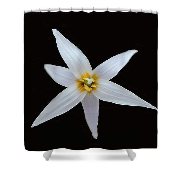 White Trout Lily Shower Curtain
