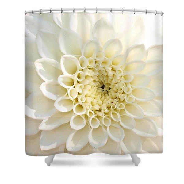 Whiteflow Shower Curtain