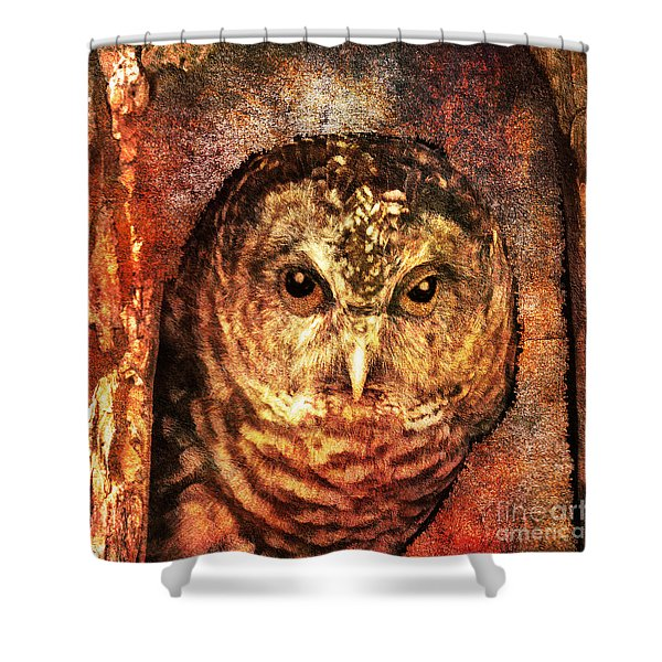 Who Whoo Yoo 2015 Shower Curtain