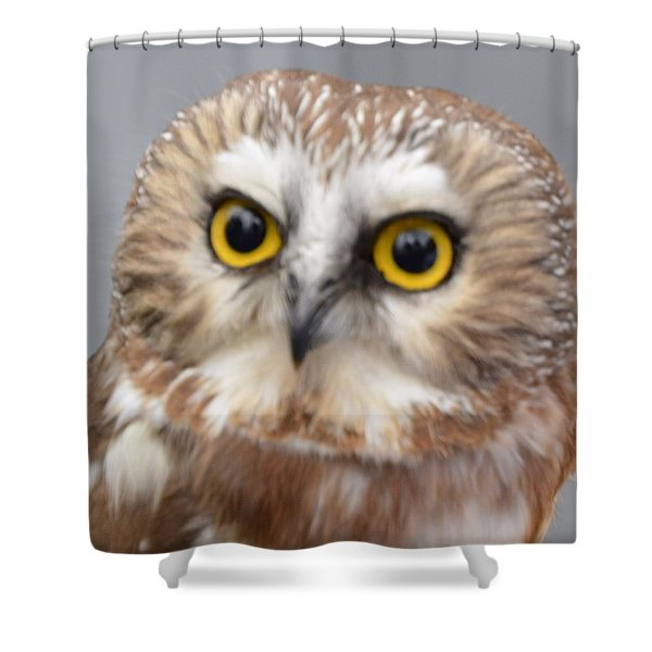 Whoo Me Shower Curtain