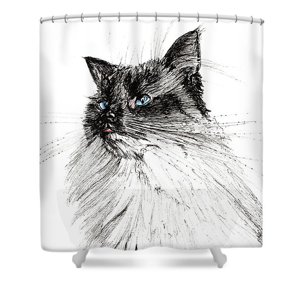 Why Shower Curtain