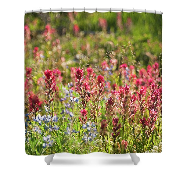 Wild About Wildflowers Shower Curtain