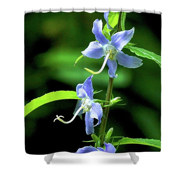 Shower Curtain featuring the photograph Wild Blue Flowers by Meta Gatschenberger