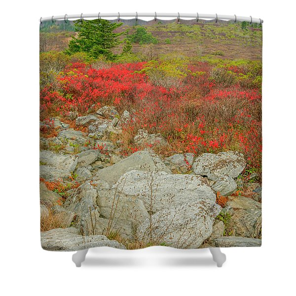 Wild Blueberries Shower Curtain