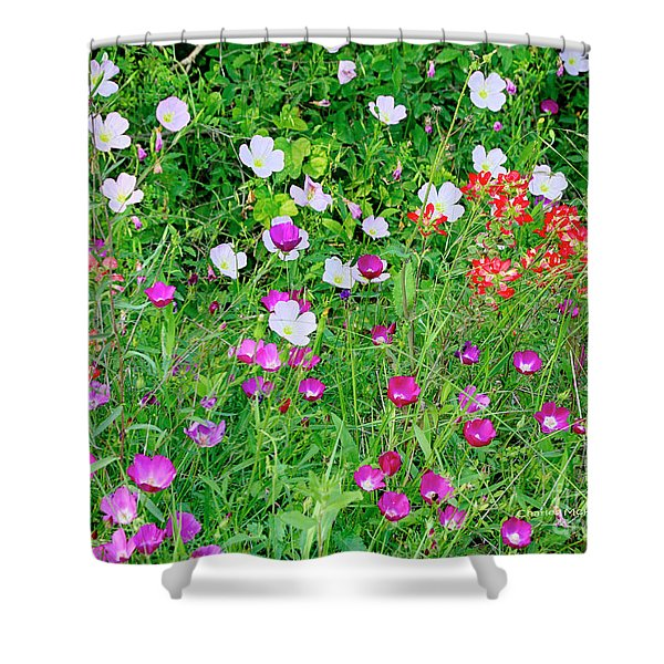 Shower Curtain featuring the photograph Wild Color Patch by Charles McKelroy